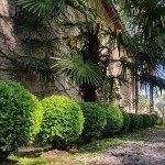 OAK Entretien Jardin